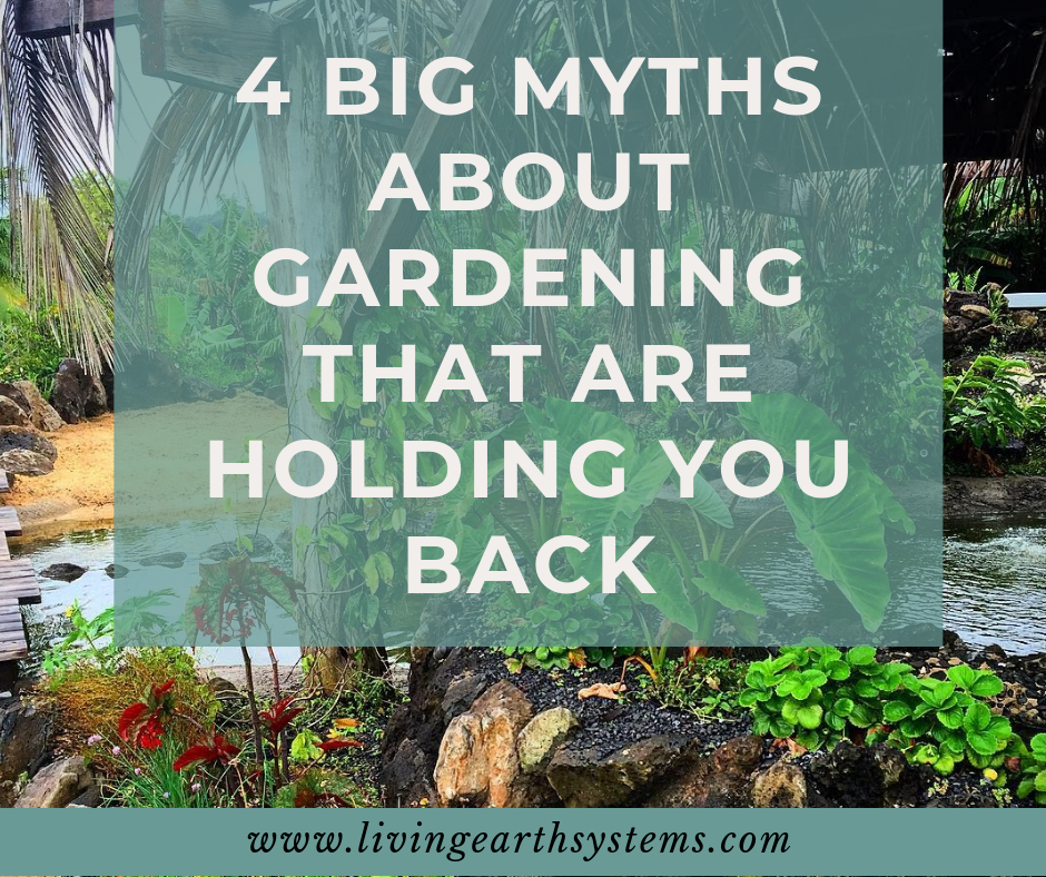 4 Big Myths About Gardening That Are Holding You Back - Living Earth Systems We are here to put to bed some of the myths that may be holding you back. Our limitations are only limitations if we see them as that. What you believe is your truth. We're here to help you believe in yourself.