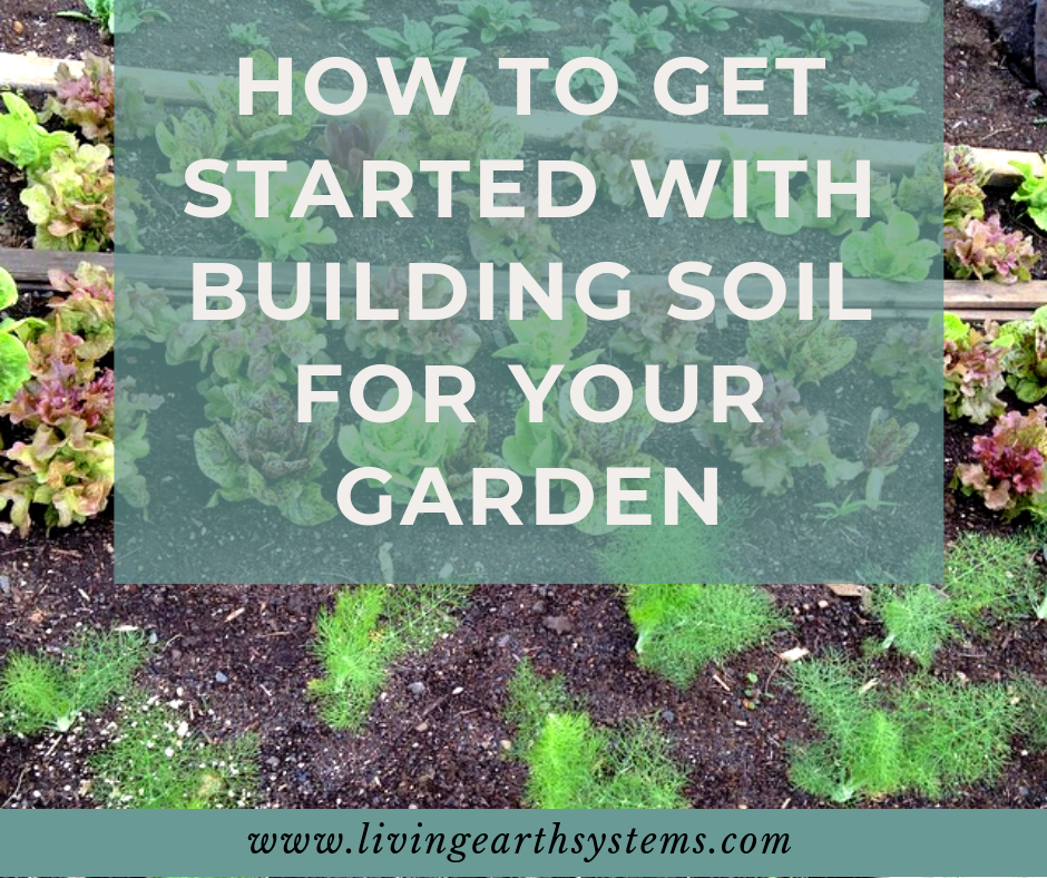 How to Get Started with Building Soil for Your Garden: Our step-by-step formula for building rich fertile topsoil for yourself! - Living Earth Systems